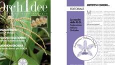 Impaginazione professionale libri e riviste