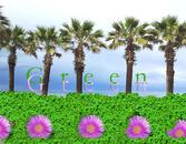 Banner pubblicitari Web e Social Network