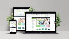 Sito Web Ecommerce CMS + Dominio + Email + SEO